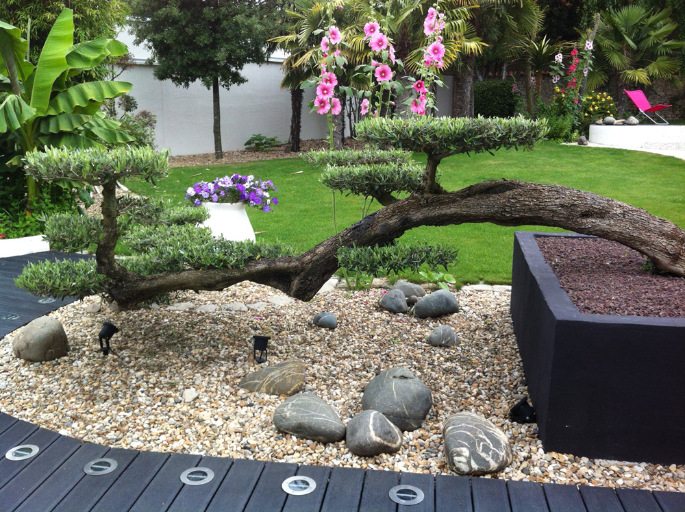 Idee creation jardin meilleures images d 39 inspiration for Idee creation jardin