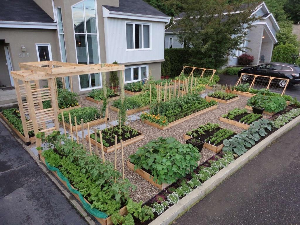 Très Conseils et astuces pour avoir un magnifique jardin - Organisation  UW73