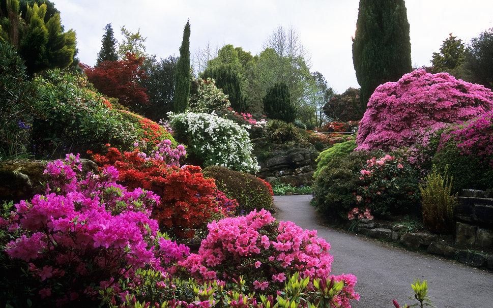 Comment choisir les plantes de son jardin ?