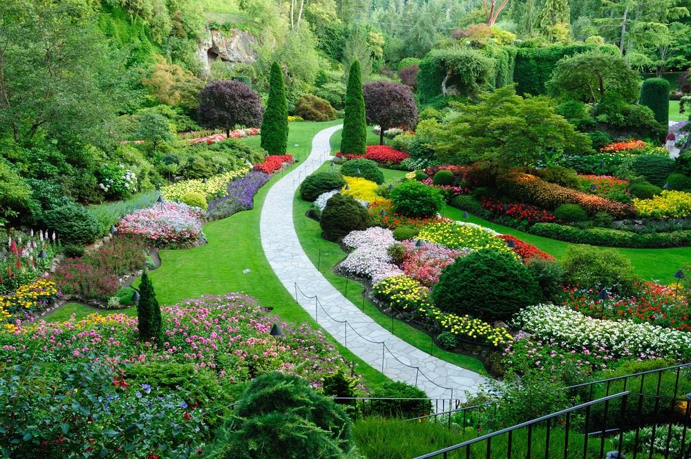 Conseils et astuces pour avoir un magnifique jardin - Conseils ...