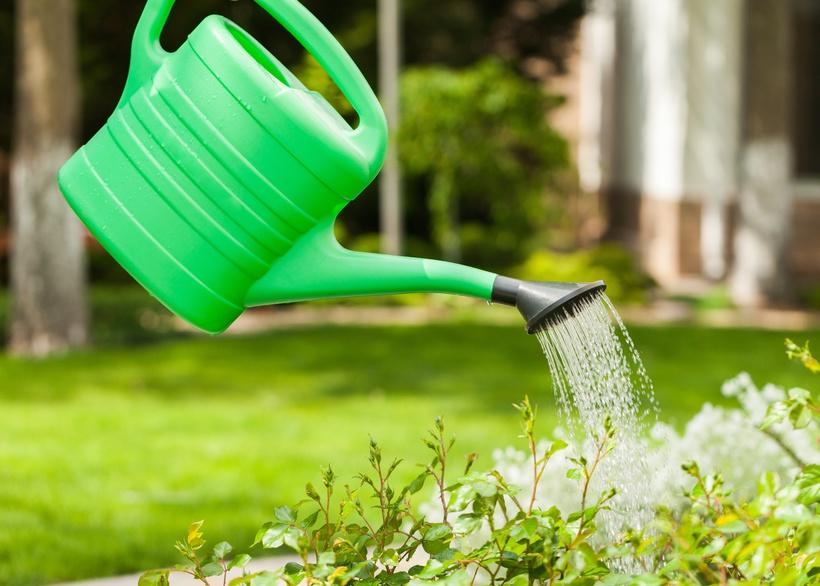 conseils et astuces pour avoir un magnifique jardin comment bien g rer l eau de l arrosage. Black Bedroom Furniture Sets. Home Design Ideas