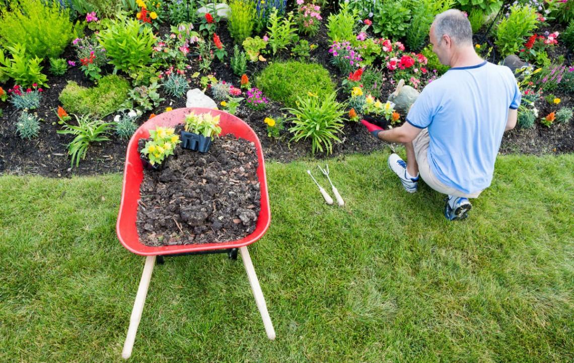 conseils et astuces pour avoir un magnifique jardin les bases du m tier de paysagiste. Black Bedroom Furniture Sets. Home Design Ideas