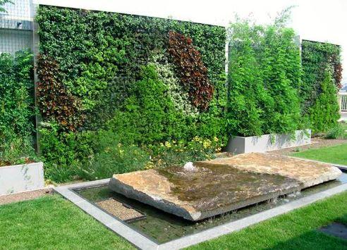 Le mur végétal dans le jardin : les bons à savoir