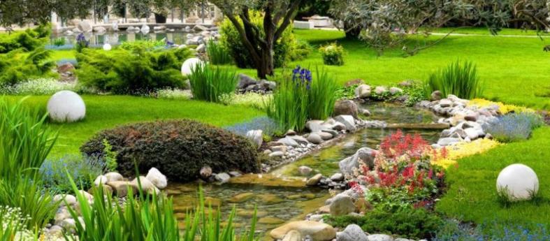 Comment faire pour avoir un joli jardin ?